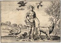 The Greek gods. Apollo