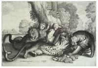 Three leopards and two boys