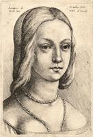 Head of a woman, after Lorenzo de Credi