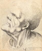 Man with snub nose and flattened chin