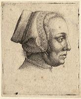 Profile of a woman's head