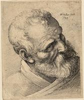 Bearded old man with a wart