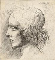 Head of young man