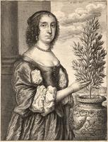 Lady and laurel plant