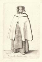 Carmelita discalceatus