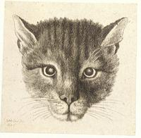 Head of a cat (small size)