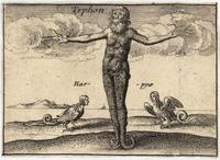 The Greek gods. Typhon